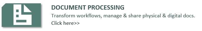 Document processing audit